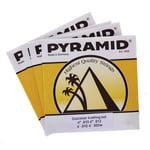 Pyramid Dulcimer Strings