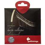 Galli Strings Lever Harp Bass Wire A29