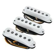 Fender Texas Special Strat Set