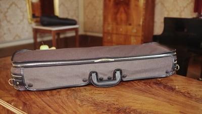 Jaeger Prestige Violin Case